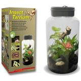 Lucky reptile insect tarrium 5lt