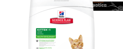 Science Plan™ Kitten Healthy Development™ (Kip)
